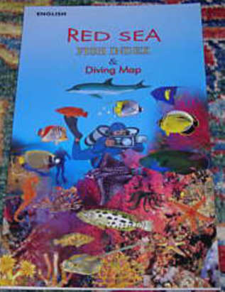 Red Sea Reef Fishes