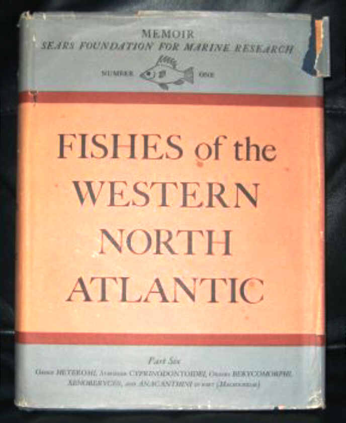 FISHES OF THE WESTERN NORTH ATLANTIC - PART ONE TO SIX