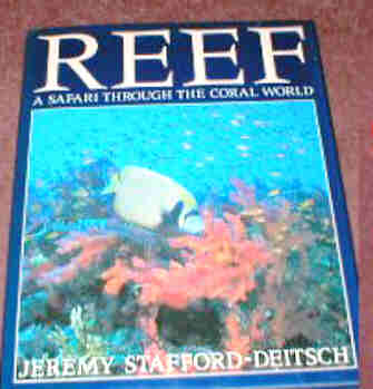 REEF- A SAFARI THROUGH THE CORAL WORLD