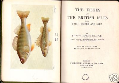 THE FISHES OF THE BRITISH ISLES BOTH FRESHWATER AND SALT