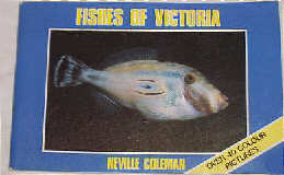 Fishes of Victoria  by Neville Coleman