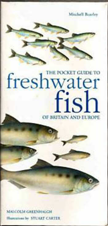 THE POCKET GUIDE TO FRESHWATER FISH OF BRITAIN AND EUROPE