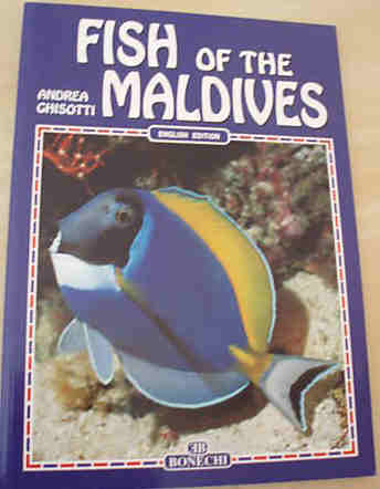 FISH OF THE MALDIVES