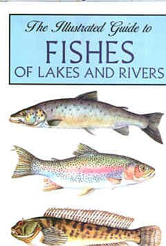 The Illustrated Guide to Fishes of Lakes and Rivers