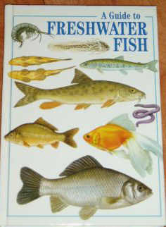 A Guide to Freshwater Fish (worldwide)