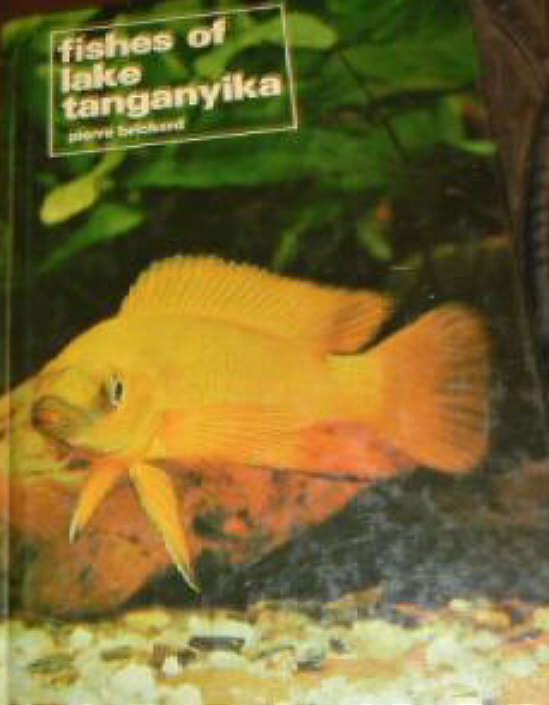 Fishes of Lake Tanganyika