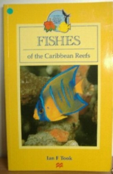 Divers Guide to Caribbean Fishes