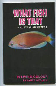 What fish is that in Australian Waters