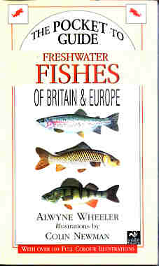 Compact Guide to Freshwater Fishes of Britain and Europe