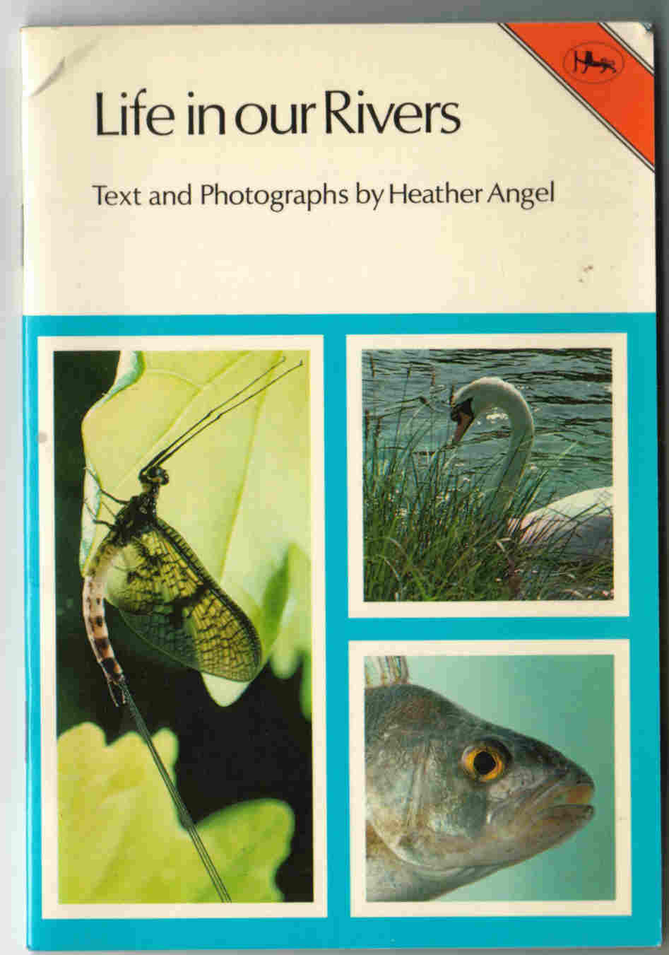 LIFE IN OUR RIVERS By Heather Angel in the Jarrold Nature Series